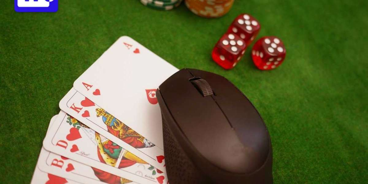 Everything You Need to Know Before Trying a Live Casino Game
