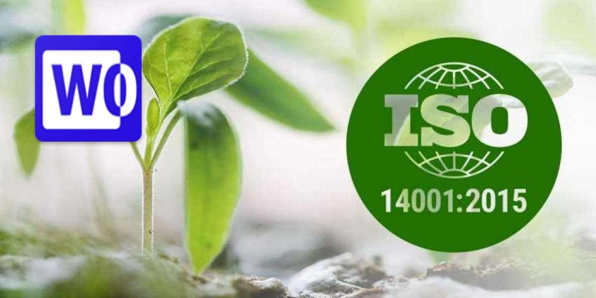 History and future of ISO 14001 Environmental Management series standards