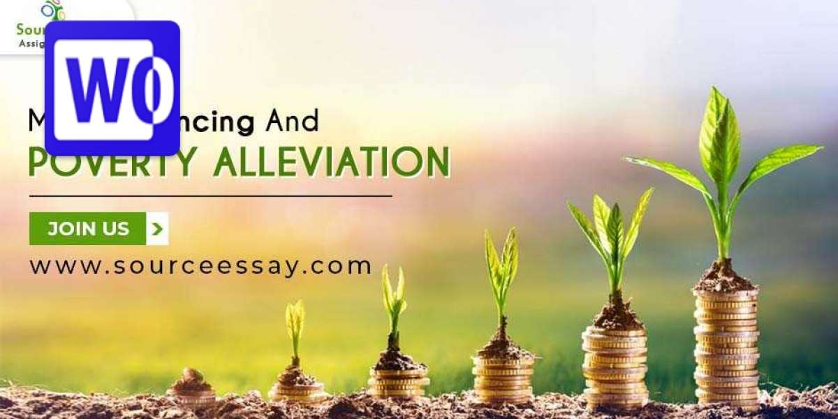 Micro Financing And Poverty Alleviation