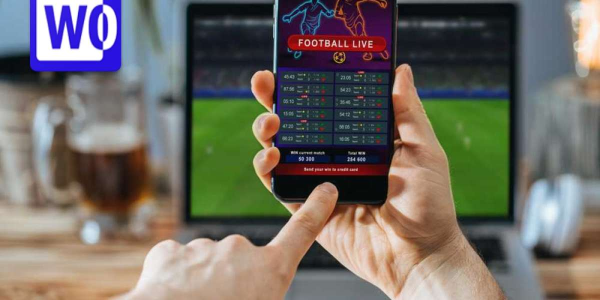 Sports betting: 5 Most Common Types of Punters