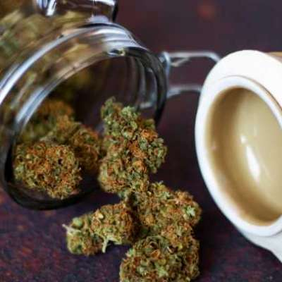 CBD Flower Online At Best Price | The Vapery Profile Picture