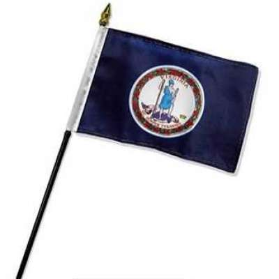 Buy Virginia 4x6in Stick Flag Profile Picture